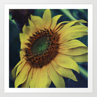 Sunflower for a dream Art Print by vanessagf