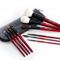 10 pcs Deluxe Makeup Brush Set (red color)