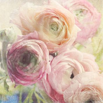 "shabby chic home decor, ""Pastels"" fine art print, romantic, pink, white, green, floral photography, still life,Ranunculus"