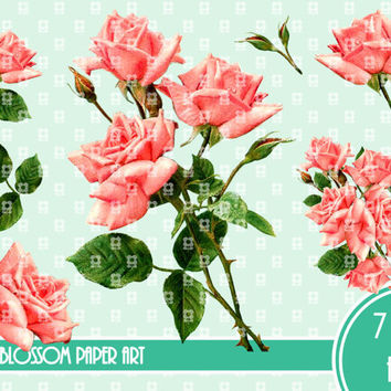 Vintage Roses - Digital Images - 7 Png files - Graphics - Transparent Background - Download for papercrafts - Iron on Transfer -  2508