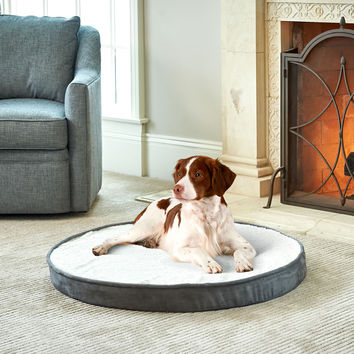 The Odor Eliminating Pet Bed