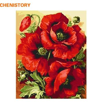CHENISTORY Acrylic Picture Red Flower DIY Digital Painting By Numbers Home Decor Modern Wall Art Canvas Painting Wall Artwork