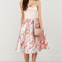 Strapless A Line Dress in Blush