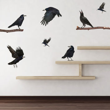 Realistic Ravens Wall Decals
