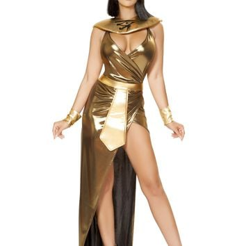 Cleopatra of the Nile Costume