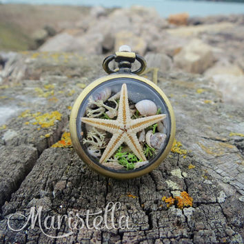 REAL SEASTAR, Real SeaSHELLS, Real corals and moss in a 30mm necklace. Bronze Mermaid CLOSED locket necklace with Mediterranean seashells.