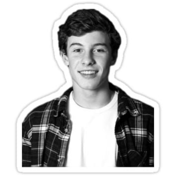 Shawn Mendes T-Shirts & Hoodies