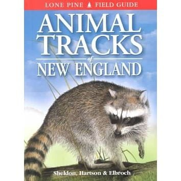 Animal Tracks of New England (Lone Pine Field Guides)