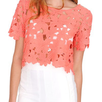 Absolute Lace Crop Top Coral