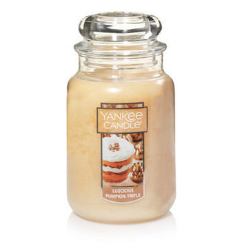 Luscious Pumpkin Trifle : Large Classic Jar Candles : Yankee Candle