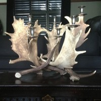 NEW! Fight Me Antler Candelabra