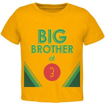 Crayon Big Brother of 3 Toddler T Shirt