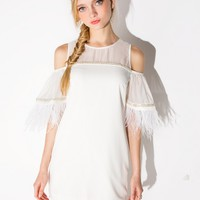 Feather Sleeve Dress