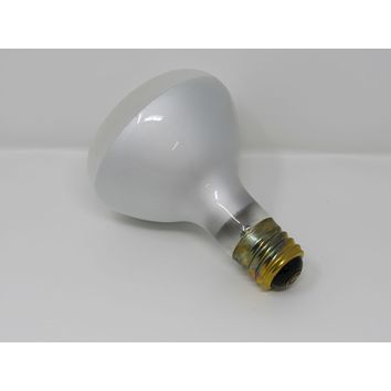 Westinghouse 300W Incandescent Light Bulb R40 Flood Frosted 5XR40A Vintage -- New