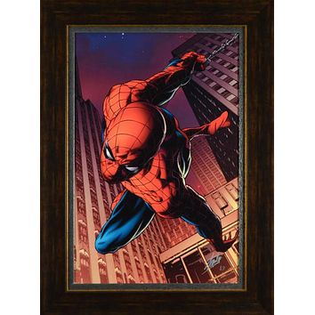 Amazing Spider-Man #641 - Limited Edition Artist Proof Giclee on Canvas by Joe Quesada and Marvel Comics Hand Signed by Stan Lee