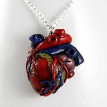 How Much I Love You, Anatomical Heart Necklace, Jewelry, Handmade