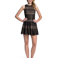 Cece By Cynthia Steffe Winnie Mixed Lace Dress
