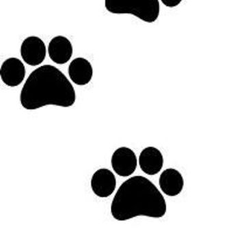 Dog Paw Prints Logo Vinyl Sticker Decal Car Truck Windon Wall Laptop notebook