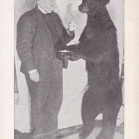 Mister Whitney and His Bear - RPPC