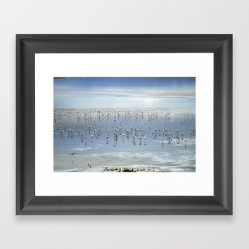 Flamingos at the blue lake Framed Art Print by Guido Montañés