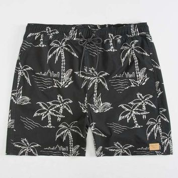 BRIXTON Palmas Mens Swim Trunks