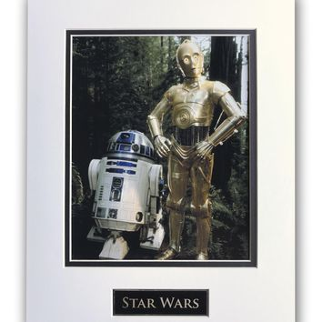 STAR WARS - R2-D2 C-3PO MATTED LICENSED 8X10 PHOTO FOR FRAME 11X14  RETURN OF THE JEDI