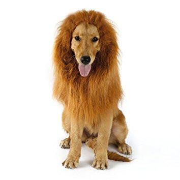 Dog Lion Mane Wigs Costume