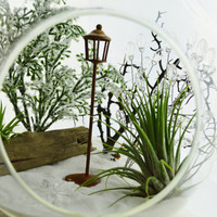 """Wintery Narnia Terrarium with Snow White Sand and the Lamp Post ~ Airplants - 7"""" Glass Round Globe ~ Magical ~ Gift ~ Ages 3 - 103"""