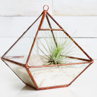 Air Terrarium Kit pyramid top glass terrarium for by ABJglassworks