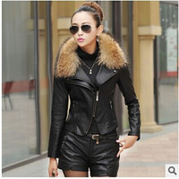 2016 Autumn New Women Genuine Racoon Dog Fur Collar Leather Jacket Slim Stand Collar Plus Cotton Motorcycle leather jacket 3XL