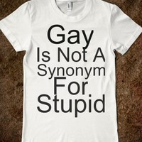 GAY IS NOT A SYNONYM FOR STUPID