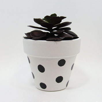 Terracotta Pot, Succulent Planter, Indoor Pot, Small Pot, White Planter, Air Plant Holder, Indoor Planter, Polka Dot Planter, Black
