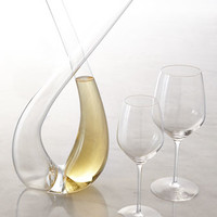 Expert X Decanter & Y Wine Glasses