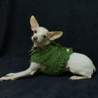 Green Chunky Dog Cardigan Gold Buttons Small