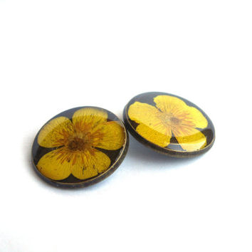 Two real flower buttons - Creeping buttercup - Large round bronze buttons - Yellow flower buttons - Botanical buttons - Sewing accessory