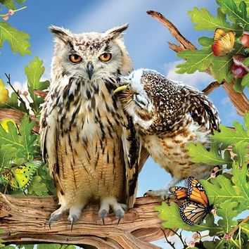 Owl Always Love You 500pc Jigsaw Puzzle