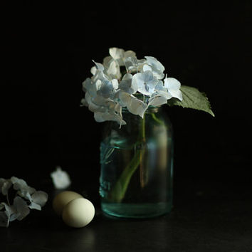 Still Life Photography of a Purple Jar and Hydrangea