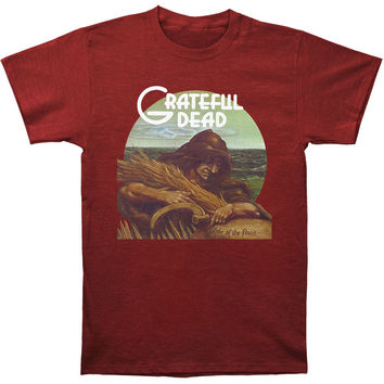 Grateful Dead Men's  Wake Of The Flood Slim Fit T-shirt Heather Cardinal
