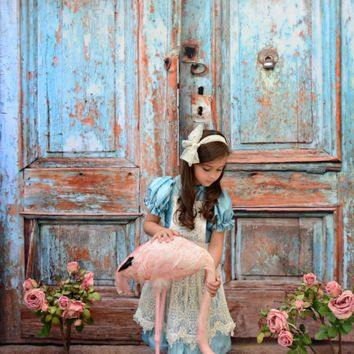 Vintage Doors Photography Backdrop Photo Background / 1062