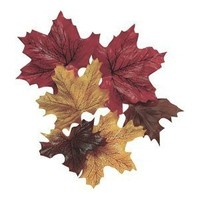100 Mixed Fall Colors Silk Maple Leaves - Great Autumn Table Scatters: Arts, Crafts & Sewing