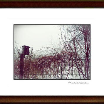 Winter Landscape Photograph, gift idea,abandoned birdhouse, nature photography,winter,vine on fence,snow,wintry home decor,vintage appeal,
