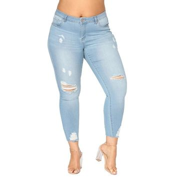 Plus Size Jeans: High Waist Stretchy Ripped Skinny Jeans