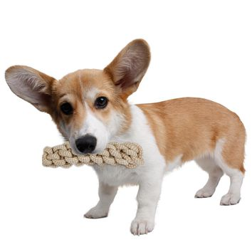 Pet Toy Dog Rope Chew-resistant