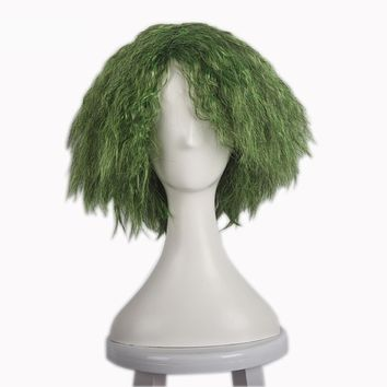 Batman The Dark Knight DC Comics Joker Synthetic Wig Heat Resistance Curly Green Cosplay Wig Costume Party