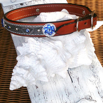 Concho Dog Collar, LEATHER COLLAR, Swarovski Crystal, Pet Collar, Exotic Hide, 24 inch Collar, Blue Crystals