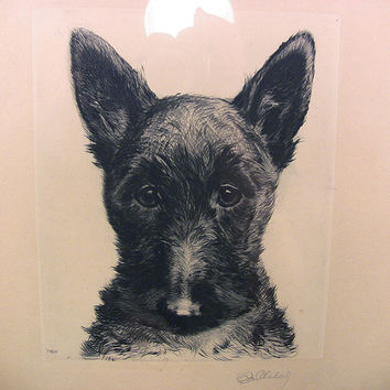 SOLD!  Vintage Eberhardt Scottish Terrier 1930s Signed Print