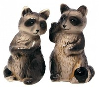 Raccoon Salt & Pepper Shaker Set