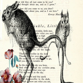 Packrats with Burgandy Flowers Book Page Art Poem Page Art Print Vintage Page Art Geeky Kitsch Art Print Upcycled Wildlife Print cp189