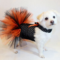 RockinDogs Orange and Black Halloween Costume Tutu Dress