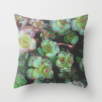 Succulents II Throw Pillow by Christine Hall